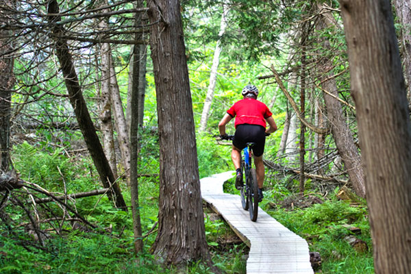 A man mountain bikes through the woods.