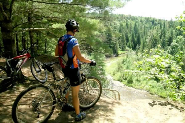 Mountain biking at Kingdom Trails