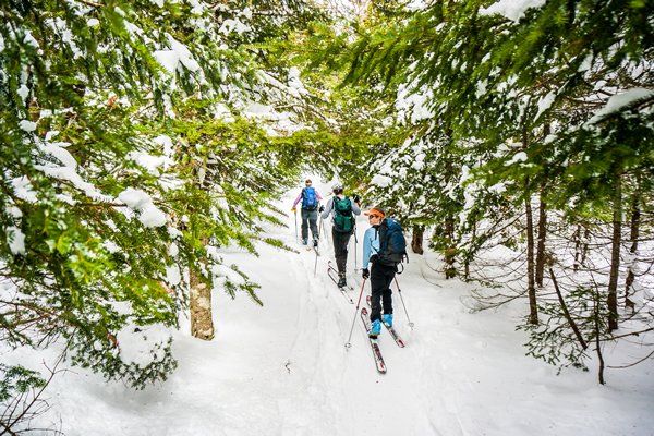 Skiing the Catamount Trail