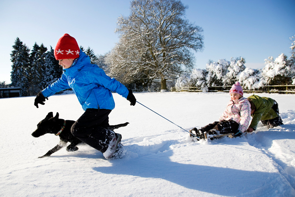 Children sledding with their dog.