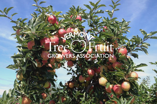 View for Apples to iPads details on the Vermont Tree Fruit Growers Association website.