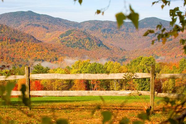 Foliage surrounds a field in Stowe, Vermont.