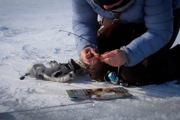 Putting bait on an ice fishing line