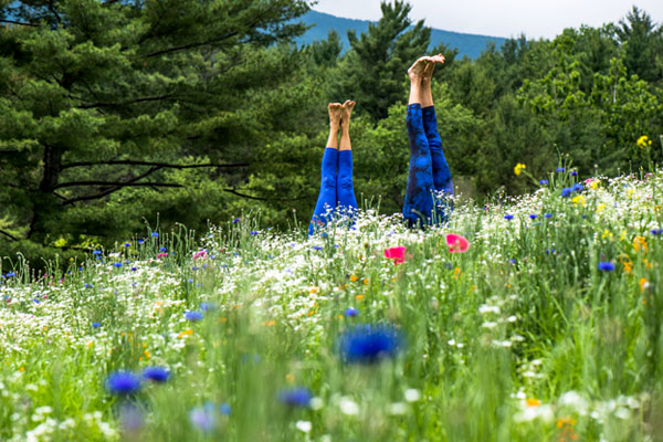 Summer Wanderlust in The Heart of The Village yoga studio in Manchester, VT.