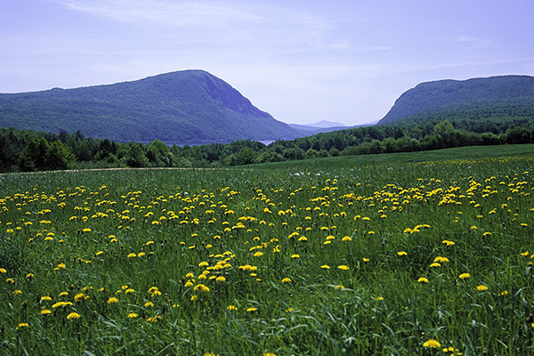 Spring in Westmore, Vermont, with Lake Willoughby in the background.